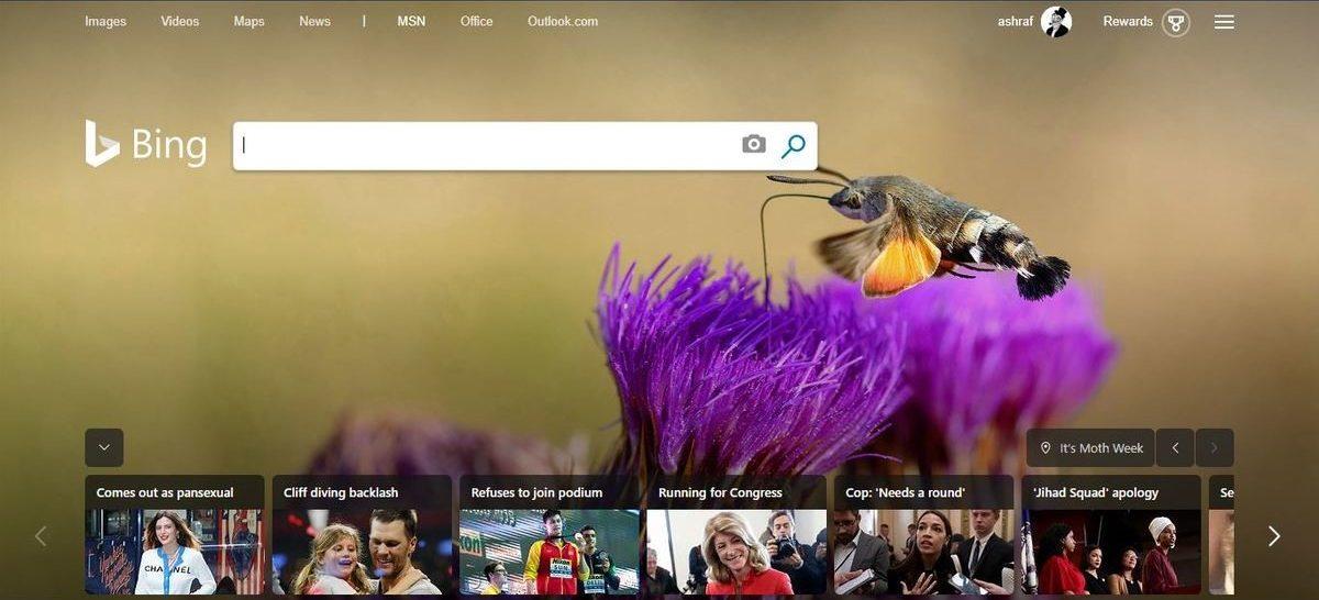 محرك بحث Bing Search