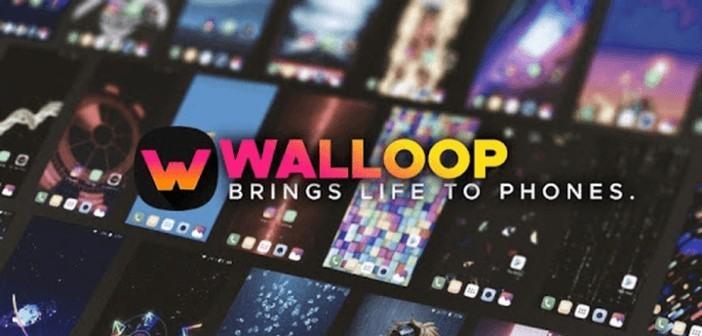 تطبيق Walloop - خلفيات متحركة