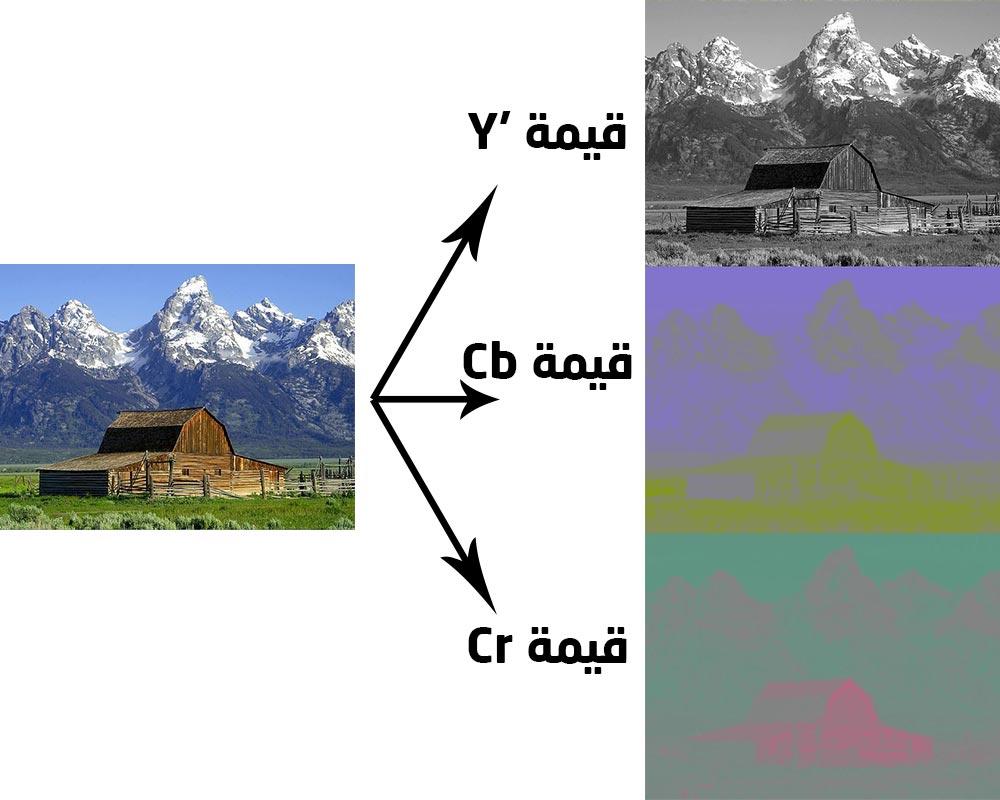 عناصر الصورة وفق نظام ألوان Y'CbCr